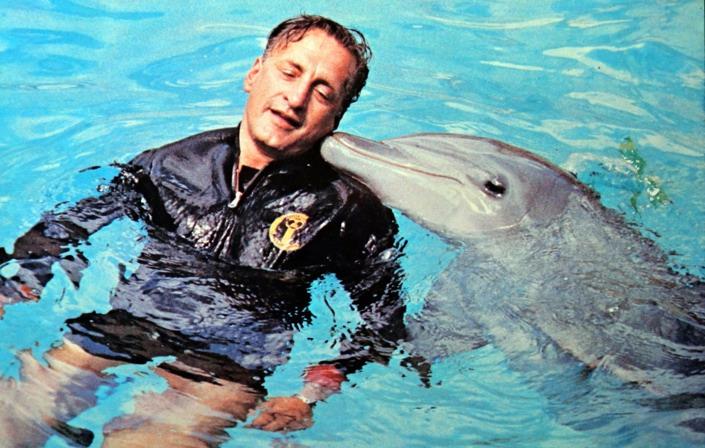 il giornodel delfino